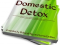 Domestic Detox Soft Cover book