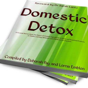 Domestic Detox Soft Cover book